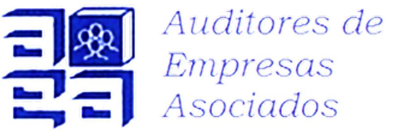 Auditores de Empresas Asociados logo